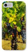 Grapes On The Vine IPhone Case by Jeff Swan