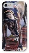 Legs IPhone Case by Molly Poole