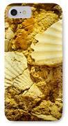 Seashell In Stone IPhone Case by Raimond Klavins