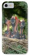 Cedar Waxwings IPhone Case by Linda Freshwaters Arndt
