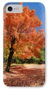A Blanket Of Fall Colors IPhone Case by Amy Cicconi