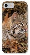 611000006 Bobcat Felis Rufus Wildlife Rescue IPhone Case