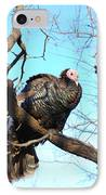 Wild Turkey IPhone Case by Thea Wolff