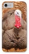 Wild Turkey IPhone Case by Thea Wolff