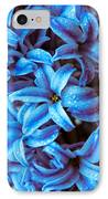 A Beauty In Blue IPhone Case by Hannes Cmarits