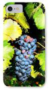 A Bunch Of Grapes IPhone Case by Kay Gilley
