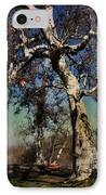 A Day Like This IPhone Case by Laurie Search