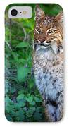A Watchful Eye IPhone Case by Mark Andrew Thomas