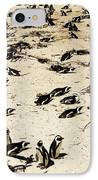 African Penguins IPhone Case by Oliver Johnston