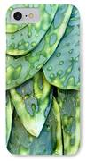 Aguave IPhone Case by Mark Goebel