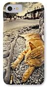 Alley Cat Siesta In Grunge IPhone Case by Meirion Matthias