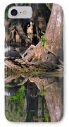 American Anhinga Or Snake-bird IPhone Case by Christine Till