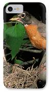 American Robin Feeding Its Young IPhone Case