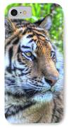 Amur Tiger 5 IPhone Case