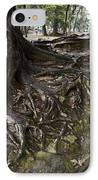 Ancient Trees Of Nara Park IPhone Case by Daniel Hagerman