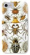 Arachnida IPhone Case by Georgia Fowler