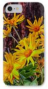 Arrowleaf Balsamroot IPhone Case by Omaste Witkowski