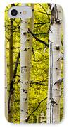 Aspens IPhone Case by Chad Dutson
