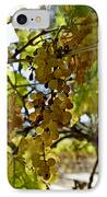 Autumn Colors In Wine Country IPhone Case by Patricia Sanders