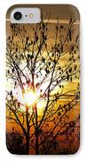Autumn Tree In The Sunset IPhone Case by Michal Boubin