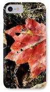 Autumns End IPhone Case by JAMART Photography