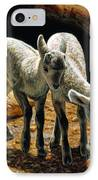Baby Bighorns IPhone Case by Crista Forest
