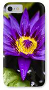 Bayou Beauty IPhone Case by Scott Pellegrin