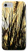 Beach Rise IPhone Case by Laura Fasulo