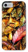 Beautiful Fall Color IPhone Case