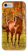 Beautiful Horse In The Autumn Aspen Colors IPhone Case by James BO  Insogna