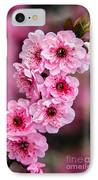 Beautiful Pink Blossoms IPhone Case by Robert Bales