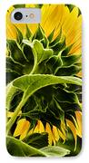 Beauty From The Back IPhone Case by Christi Kraft