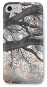 Big Sur Oak IPhone Case