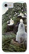 Black-browed Albatross Chick Sitting On IPhone Case by Joel Bennett