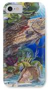 Black Grouper Hole IPhone Case by Carey Chen