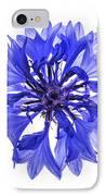 Blue Cornflower Flower IPhone Case by Elena Elisseeva