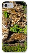 Bobcat At Sunset IPhone Case by Mark Andrew Thomas