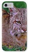 Bobcat Sedona Wilderness IPhone Case