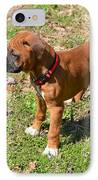 Boxer Puppy 2 IPhone Case by Maria Urso