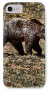 Brown Bears IPhone Case by Angel Jesus De la Fuente