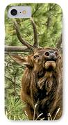 Bugling Bull Elk II IPhone Case by Ron White