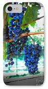 Cabernet Sauvignon Grapes IPhone Case by Robert Bales