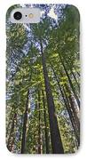 California Redwood Forest IPhone Case by Brendan Reals