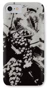 California Vineyard IPhone Case by Linda Shafer