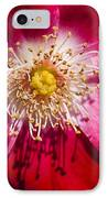 Camellia IPhone Case by Carolyn Marshall