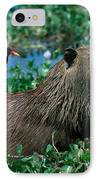 Capybara And Jacana IPhone Case by Francois Gohier
