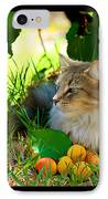 Cat's Mountain Summer IPhone Case by Susanne Still