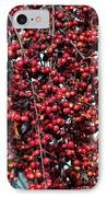 Cherries IPhone Case by John Rizzuto