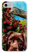 Chocolate Raspberry Fields IPhone Case by Molly Poole