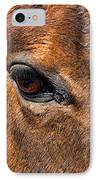 Close Up Of A Horse Eye IPhone Case by Paul Ward
